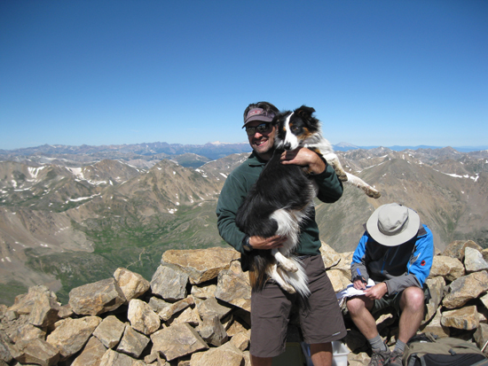 border collie mount elbert