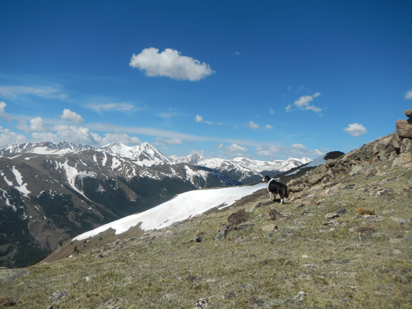 Republican Mountain & Sherman Mountain – Colorado Trip Report